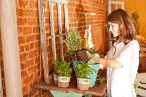 woman-planting-herbs
